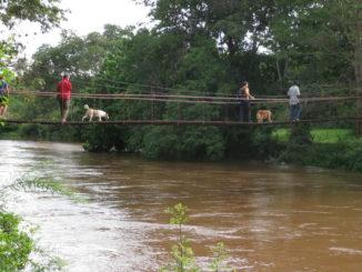 ponte sospeso