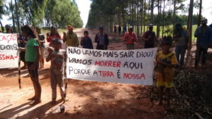 povo-gk-acampamento-ypoi-2015-foto-matias-rempel